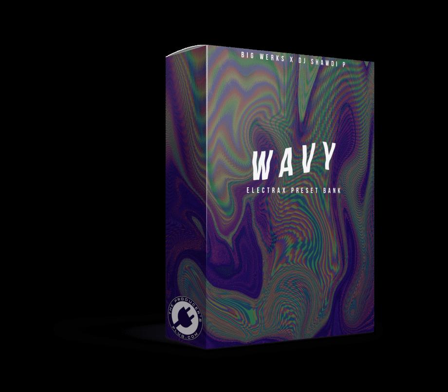 The Producers Plug Big Werks DJ Shawdi P Wavy ElectraX Bank
