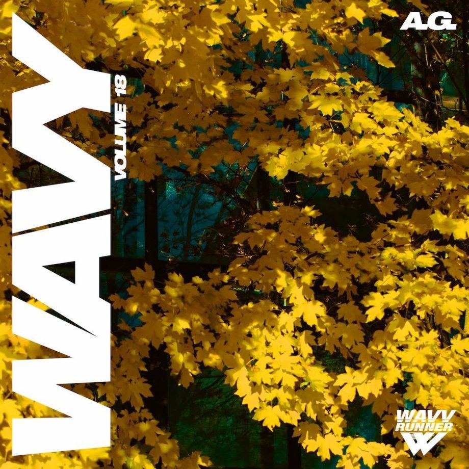 The Drum Broker A.G. Wavy Sample Pack Vol. 18