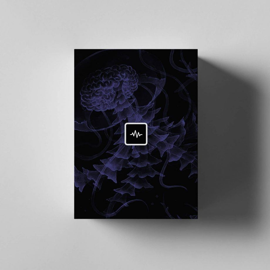WavSupply Nick Mira Brainstorm Loop Kit