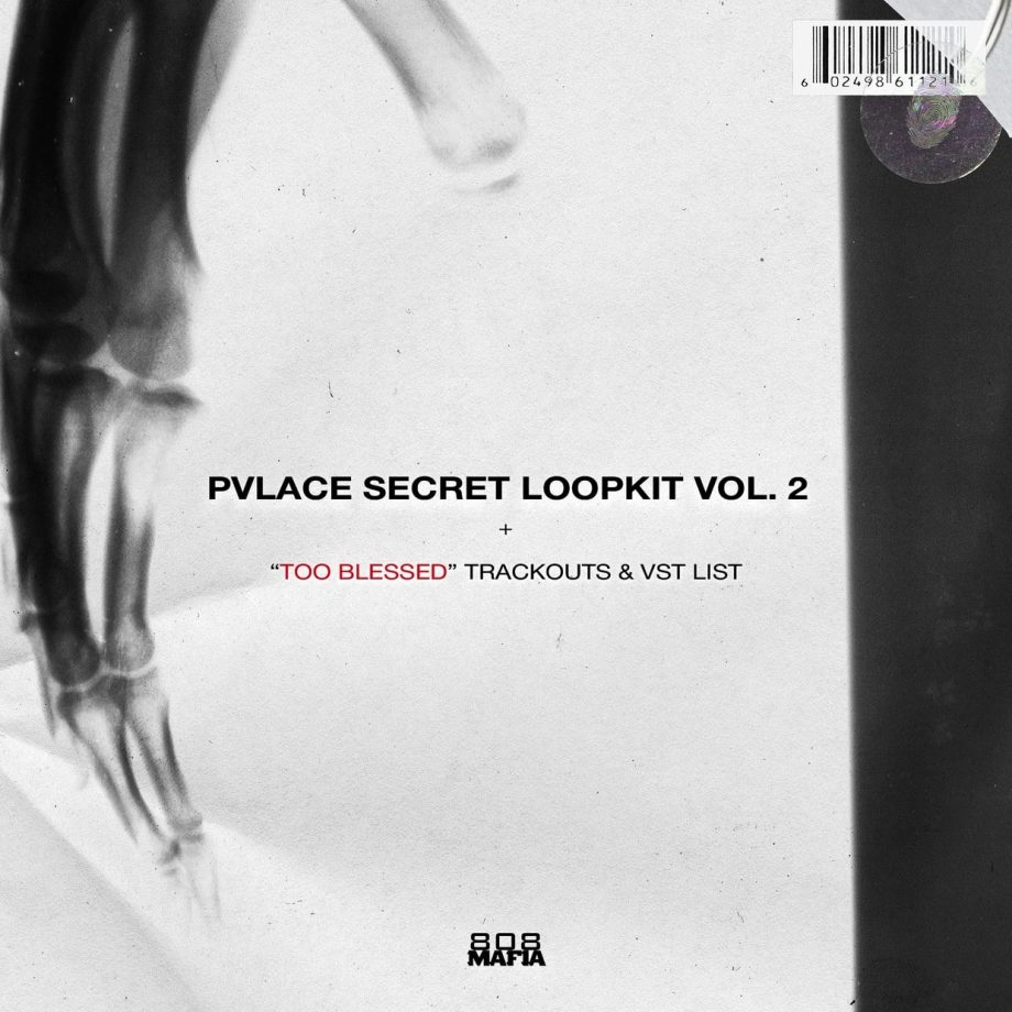 PVLACE Secret Loopkit Vol.2 TOO BLESSED Trackouts VST LIST