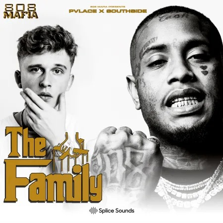 Splice Sounds 808 Mafia Presents Pvlace x Southside The Family Sample Pack