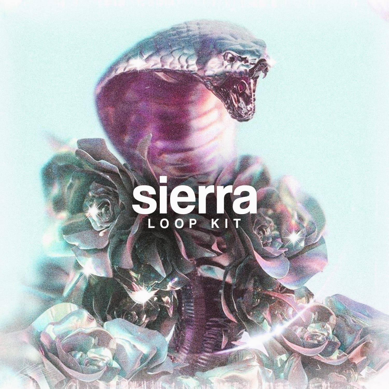 Drumify – Based1 – Sierra (Loop Kit)