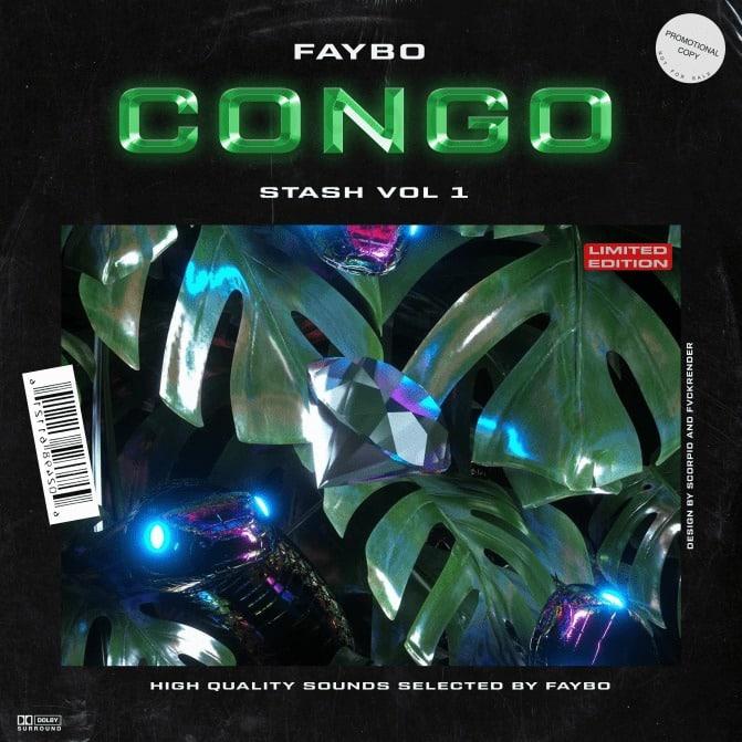 Drumify Faybo – Congo Drum Kit