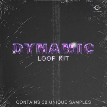 YBH Beats & Wave808 - Dynamic Loop Kit