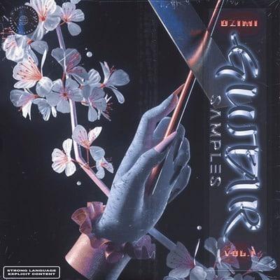 prod. dzimi - Guitar Samples Vol. 1