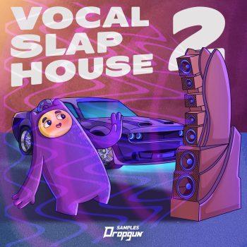 Dropgun Samples - Vocal Slap House 2