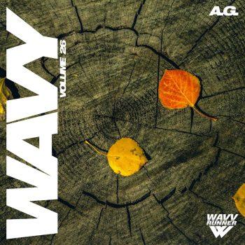 The Drum Broker - A.G. - Wavy Sample Pack Vol. 26